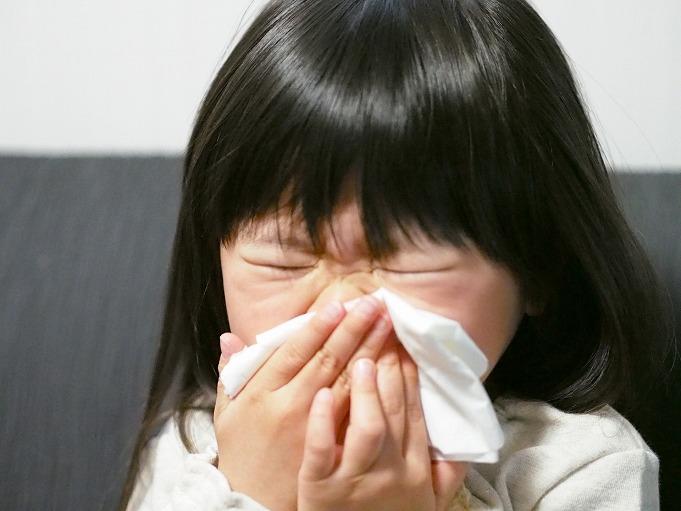 アレルギーを起こす原因は?